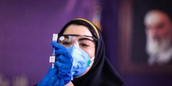 چند درصد ایرانیها واکسن کرونا زدهاند