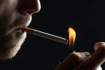 خطر رهاسازی تهسیگار در محیط زیست