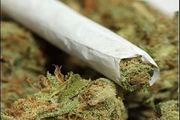 کانادا در آستانه آزاد کردن ماریجوانا
