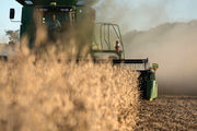 هشدار هواشناسی به کشاورزان/ بارشهای کمتر از نرمال در فصل پاییز