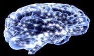 مغز چقدر الکتریسیته تولید میکند؟!