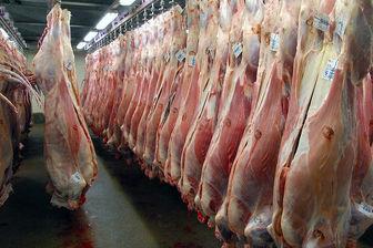 قیمت دلار، گوشت قرمز را هم گران کرد