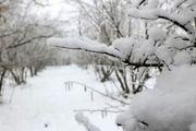 اشتباهات رایجی که نباید هنگام پارو زدن برف انجام داد