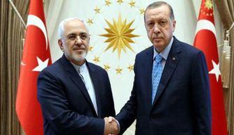 دیدار ظریف با رئیس جمهوری ترکیه +عکس