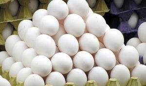 تخم مرغ باز هم روی اعصاب
