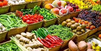 تولید  ۹۶۱۴۳ کیلو محصول باغی به ازای هر ایرانی