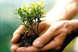 راه اندازی شبکه تلوزیونی کشاورزی