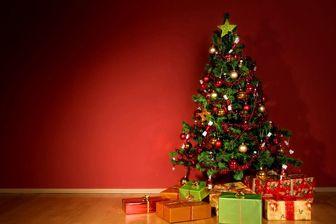 صف مردم برای خرید درخت کریسمس/ فیلم